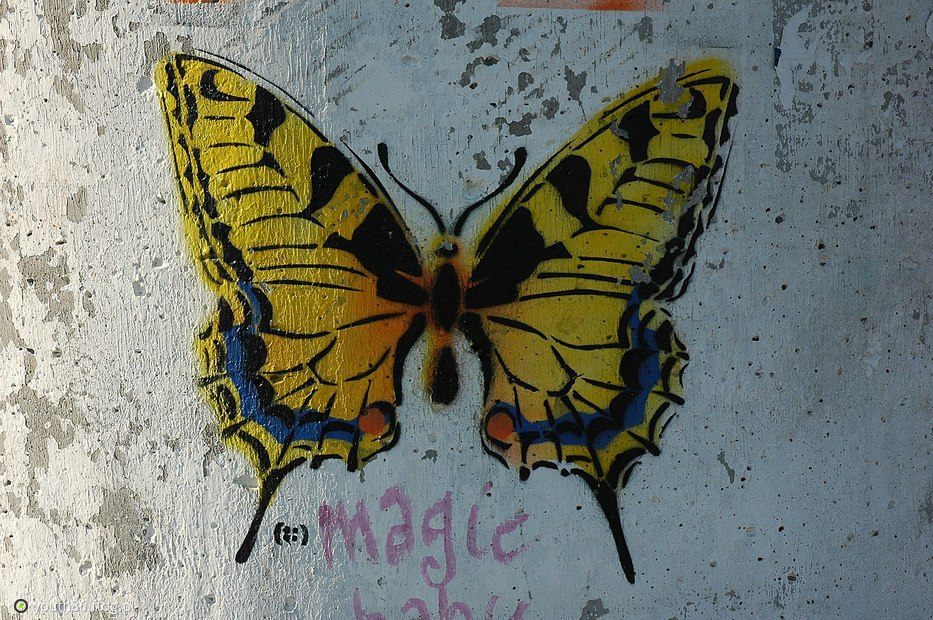 121. Magic (!) / butterfly effect