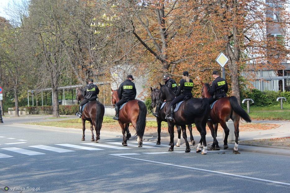 Польша направляет в Украину группу полицейских для помощи в реформах - Цензор.НЕТ 2128