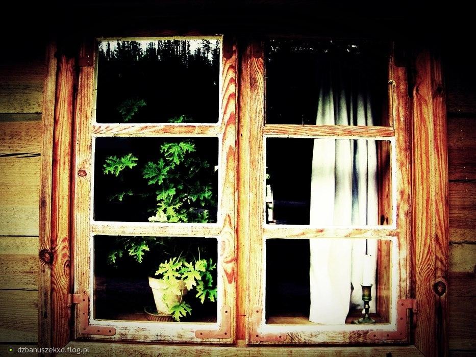 Otwórz okno i zobacz. Zobacz jak tam jest pięknie.. Zabierz mnie tam !