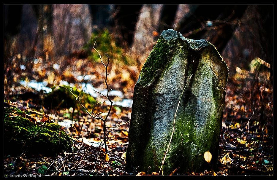 http://s3.flog.pl/media/foto/945523_kirkut.jpg