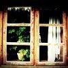 Otwórz okno i zobacz. Zob<br />acz jak tam jest pięknie.<br />. Zabierz mnie tam ! ::