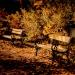 Pomyka jesien... ::